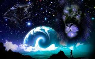 Совместимость Льва и Тельца – причины конфликтов