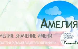 Значение красивого имени Амелия – судьба, характер и семья