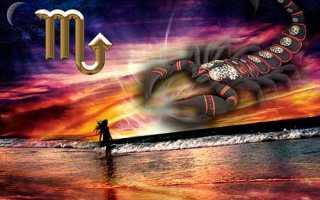 Совместимость Скорпиона и Скорпиона в отношениях