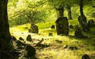 К чему снится кладбище?