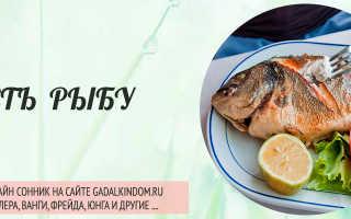 К чему приводит сон о рыбе, которую вы едите в различных видах